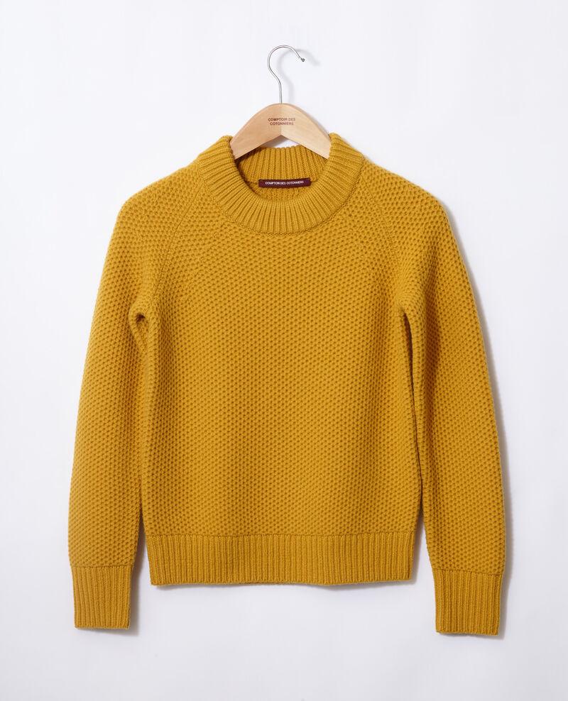 Jersey de lana Golden spice Ginseng