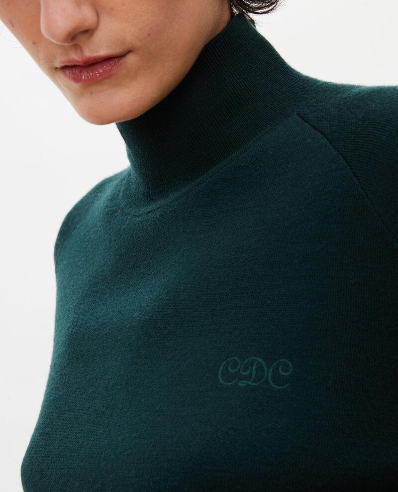 Jersey de lana merino con cuello subido Scarab Malleville